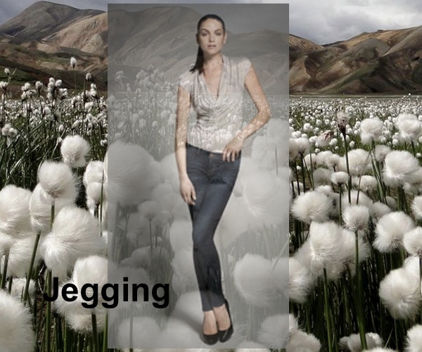 Jegging Jeans, J Brand, Collage by Nina Papaioannou