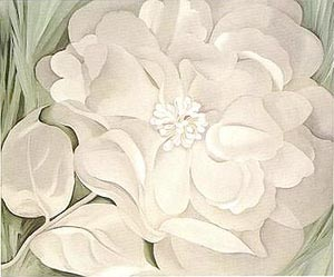 Georgia O'keefe White Calico Flower 1931