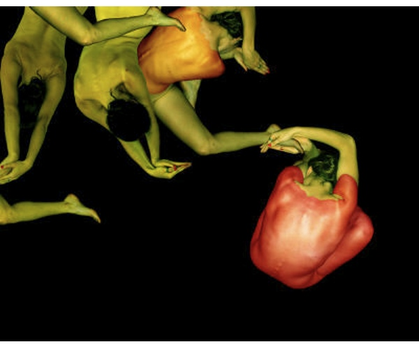 peppers red yellow  Cecelia Webber Photograph  nude bodies