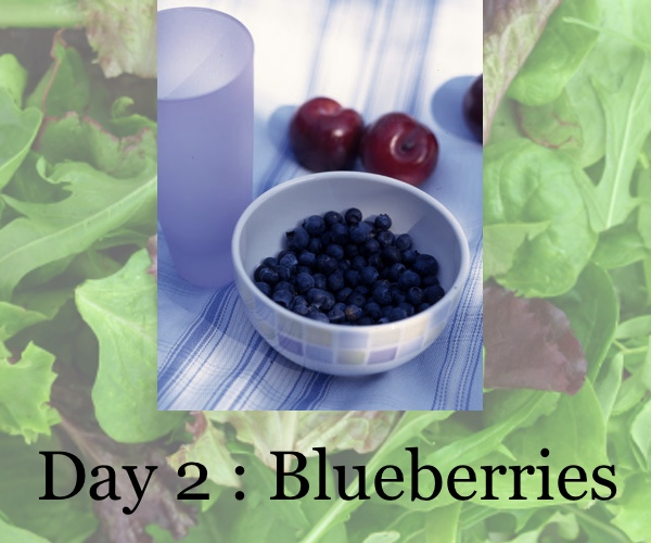 diet day 2, blueberries, collage trendsurvivor
